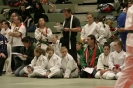 GarvidaCup2011_Wettkampf_33